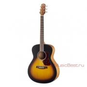 Большой выбор гитар - начинающим и профессионалам