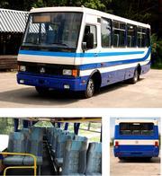 Автобус БАЗ ЭТАЛОН  ТУРИСТИЧЕСКИЙ