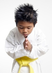 Каратэ kyokushinkai для детей от 4-х лет у вас дома