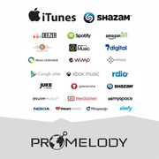 PROMELODY - самый лёгкий способ продавать свою музыку во всём мире!