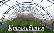 Теплица Кремлёвская с доставкой в  СНТ Московскую область