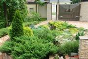 Проектирование,  озеленение,  благоустройство. Цветники,  плодовые деревь