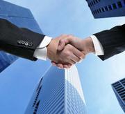 Ищу партнера. Создание проектной организации