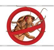 уничтожение клопов тараканов двойной удар гарантия
