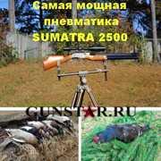 Самая мощная пневматика,  пневматика для охоты