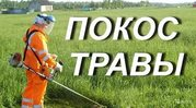 скошу траву на вашем участке