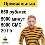 Безлимитные тарифы Билайн по всей России