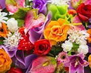Продам живые  цветы розы тюльпаны  и другие  оптом