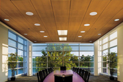 Деревянные потолочные панели для подвесного потолка